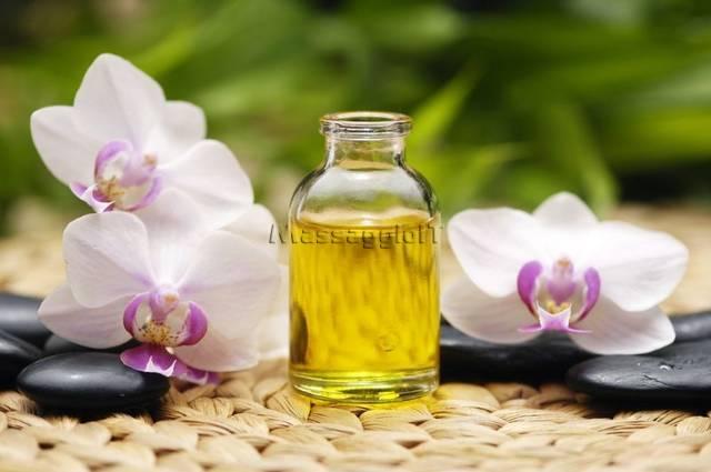 Massaggiatrici Forli New- body massage erotico- nuru massage-black-out massage e prostatico e molto altro